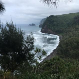Kapa'au Coastline