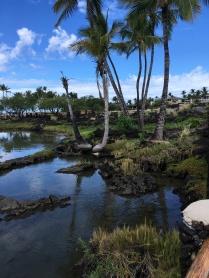Ancient Fish Pond along shoreline