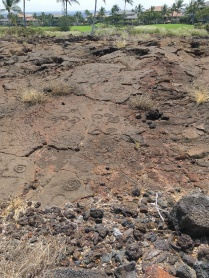 Petroglyphs along King's Trail